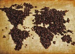 Capítulo 1.- Teoría del Café