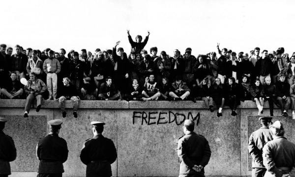El muro de la estupidez